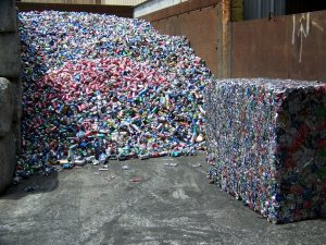 Volunteer Recycling and Salvage aluminum cans
